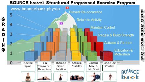 Exercise Rehabilitation using Physitrack (Bundle)