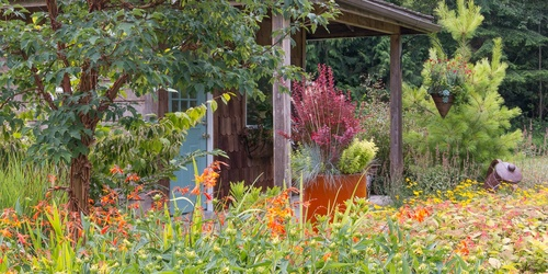 Container Gardening Duo