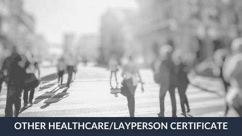 Other Healthcare / Layperson 20-Credit Certificate Course Bundle