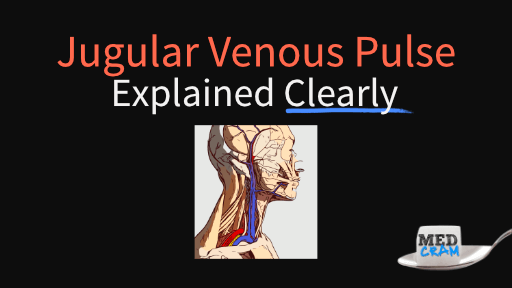 jugular venous pulse (jvp) explained clearly