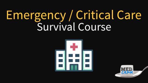 emergency medicine / critical care