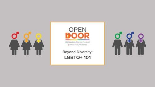 Beyond Diversity: LGBTQ+ 101