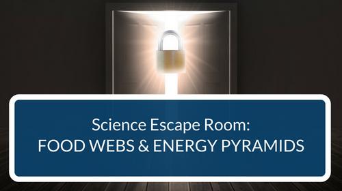 Food Webs and Energy Pyramids Escape Room