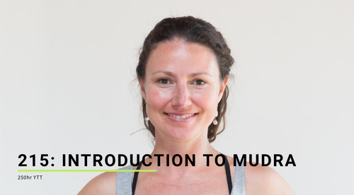 215: Introduction to Mudra