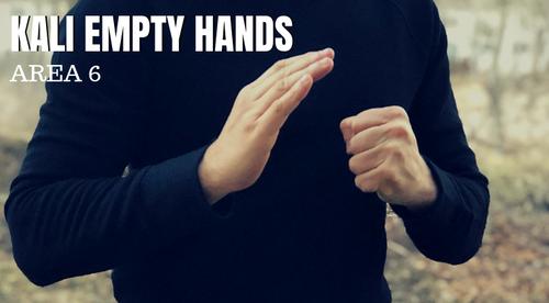 EMPTY HANDS - Kali Area 6