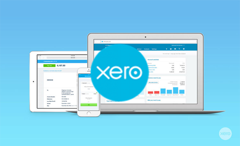 How to do Business Tax Returns in Xero