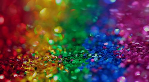 NICHE CASE STUDY: REACHING THE LGBT MARKET