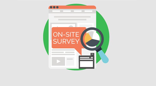 21- Survey insights: A fast way to process your VOC survey responses