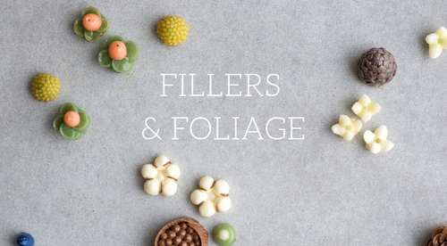 Fillers and Foliage