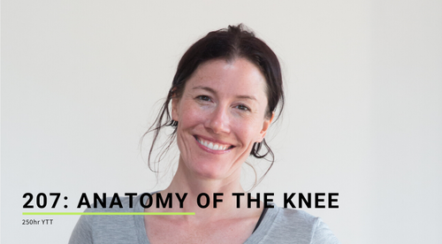 207: Anatomy of the Knee