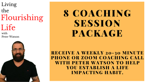 8 x 30 Minute Coaching Sessions