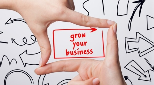 How To Grow Your Business Mini Course